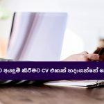 රැකියාවකට අයඳුම් කිරීමට CV එකක් හදාගන්නේ කොහොමද ?  - How to Write a CV or Curriculum Vitae for job interviews