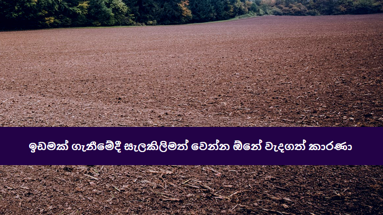 Things-to-consider-when-buying-a-land-in-Sri-Lanka-v2