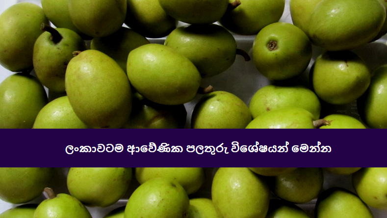 Native Fruits in Sri lanka